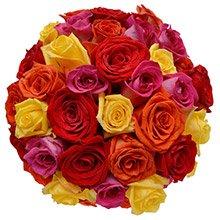 Buquê Soneto 36 Rosas Coloridas