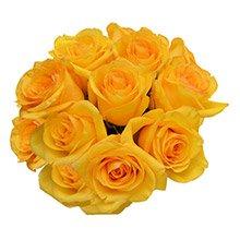 Buquê Surpresa de Rosas Amarelas