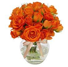 Brisa de Rosas Orange no Vaso
