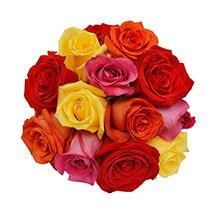 Buquê Luna de Rosas Coloridas