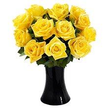 Luna de Rosas Amarelas no Vaso