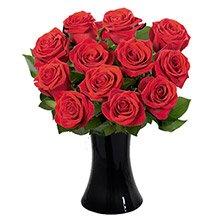 Luna de Rosas Vermelhas no Vaso
