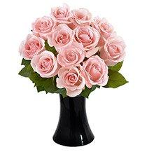 Luna de Rosas Cor-de-Rosa no Vaso