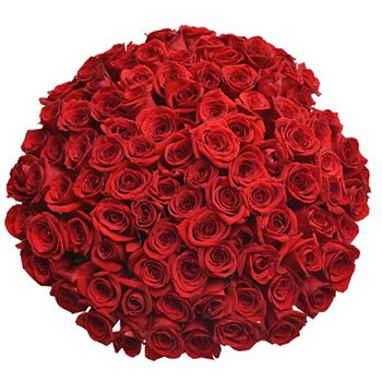 Buquê 100 Rosas Colombianas