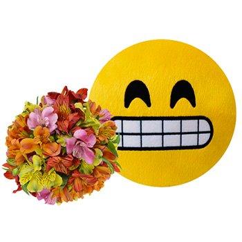 Mix de Astromélias Coloridas & Emoji Sorriso