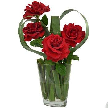 Romance das Rosas by Katia Jannini