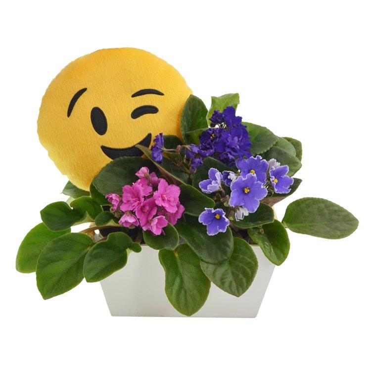 Violetas & Emoji Piscante