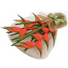 Flor Exótica Tropical Helicônia
