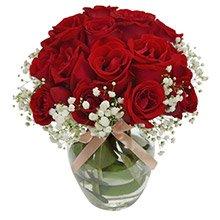 Mini Delicadeza de Rosas Nacionais Vermelhas