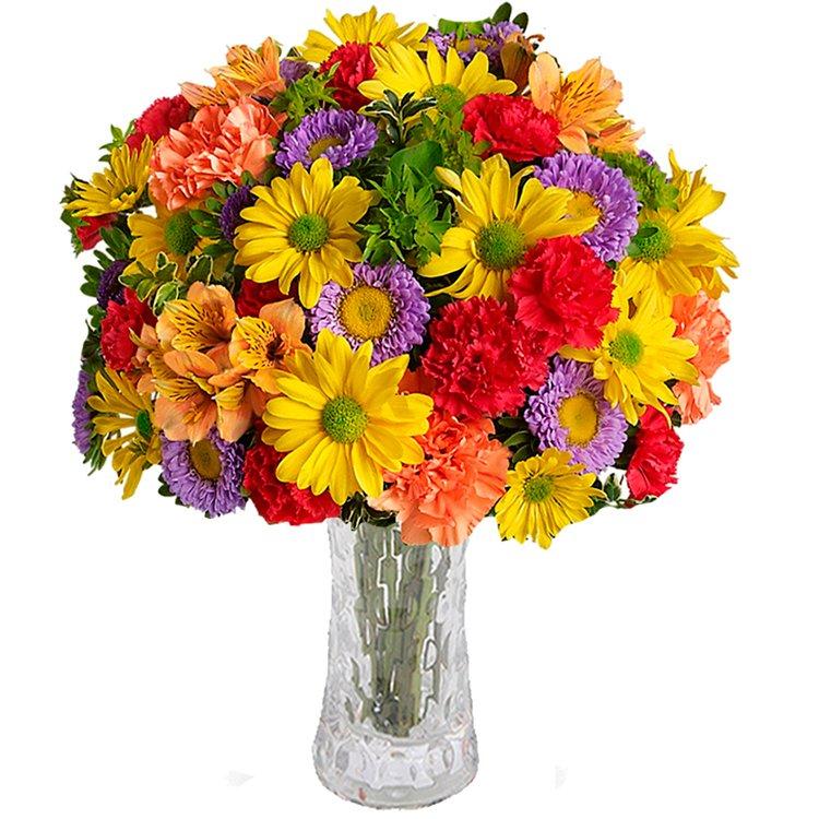 Mix de Flores Silvestres Premium