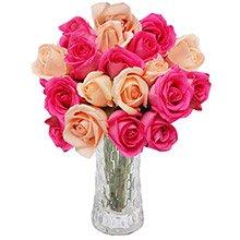 Opção do Amor Rosa 20 Rosas