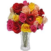 Opção do Amor Colorido 20 Rosas