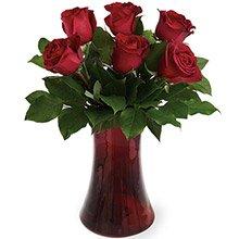 Poesia de 6 Rosas Vermelhas