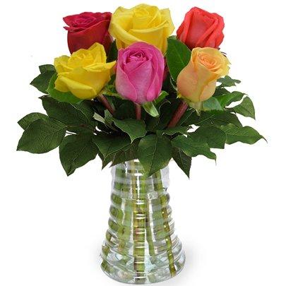 Luxuosas 6 Rosas Coloridas no Vaso