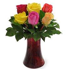 Poesia de 6 Rosas Coloridas