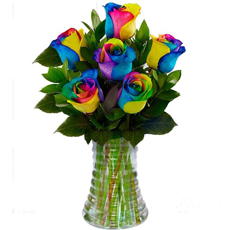 Luxuosas 6 Rosas Multicolor