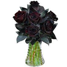 Luxuosas 6 Rosas Pretas