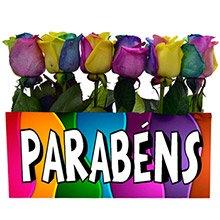 Jardim de Parabéns Multicolor