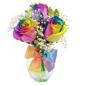 Charme de Rosas Multicolor