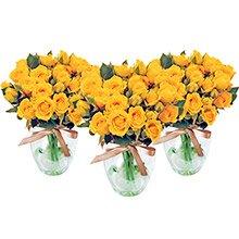 Trio Contagiar de Rosas Amarelas