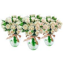Trio Contagiar de Rosas Brancas