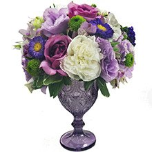 Mix de Flores Royal Purple