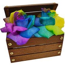 Mini Baú & Rosas Multicolor