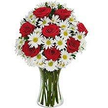 Luxuoso Mix de Margaridas Brancas & Rosas Vermelhas