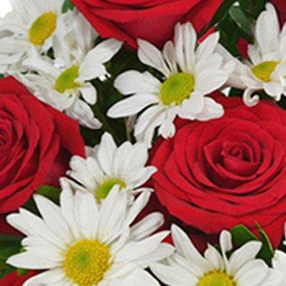 Cada Flor, Uma Flor. Cada Beleza, Uma Beleza. Cada Ser, Um Único e Maravilhoso Ser