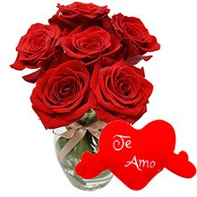 Rosas Vermelhas & Coração de Pelúcia