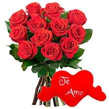 12 Lindas Rosas Vermelhas & Coração de Pelúcia