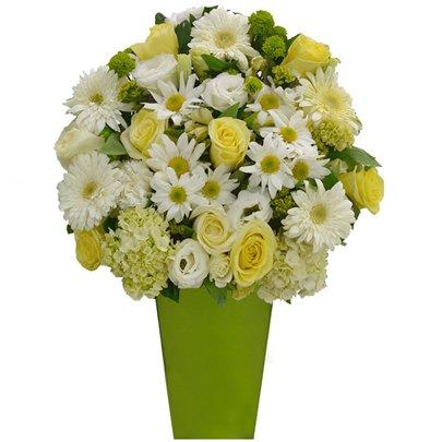 Flores Nobres Green no vaso