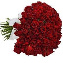 Buquê de 100 Rosas Vermelhas