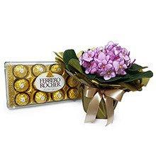 Violeta Rosa & Bombons Ferrero Rocher
