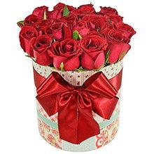Encantadoras Rosas Vermelhas