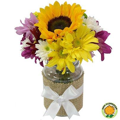 Mix de Flores Alegrar