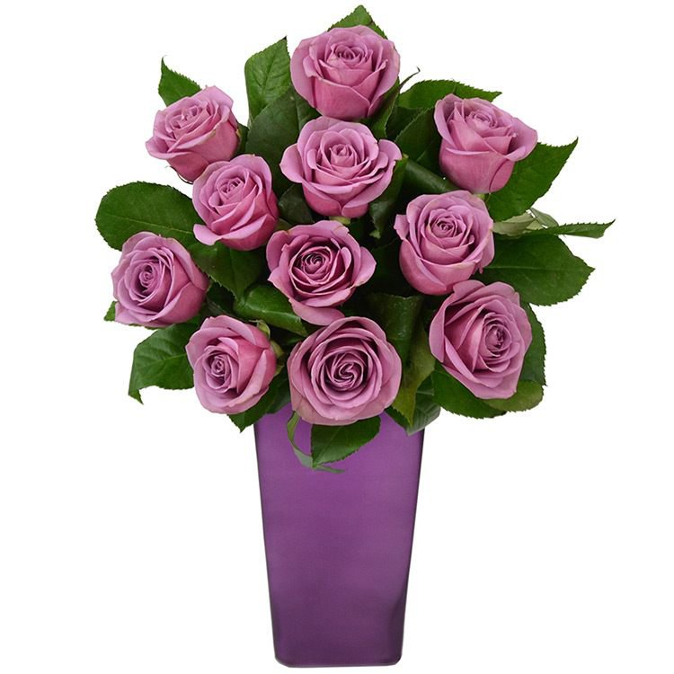 Flores Nobres no Vaso Purple