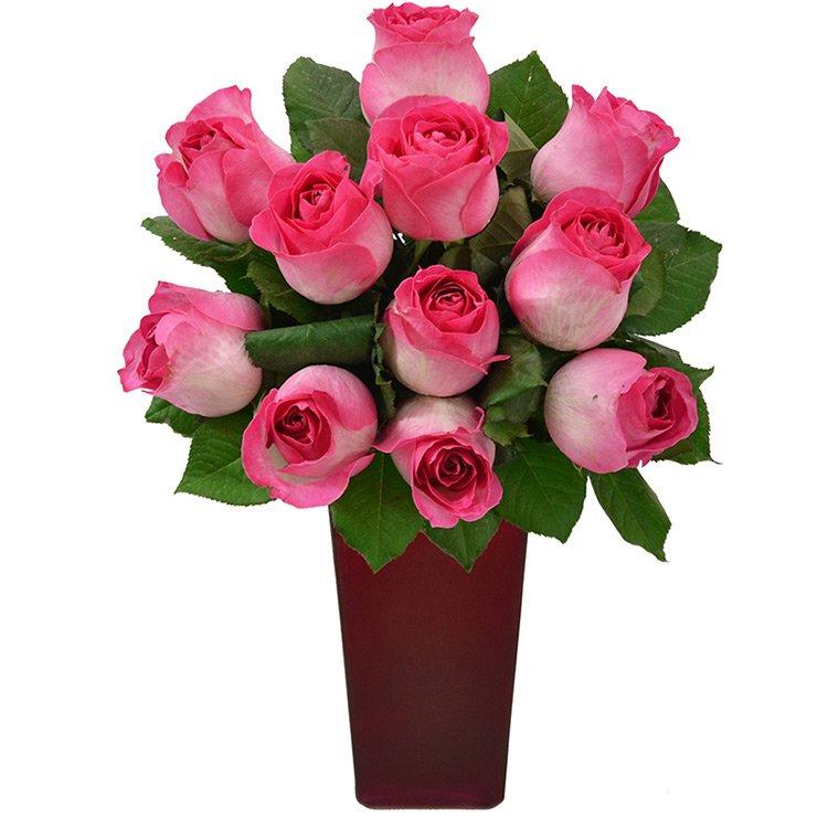 Flores Nobres no Vaso Pink