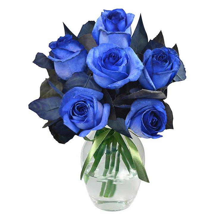 Luxuosas 6 Rosas Azuis