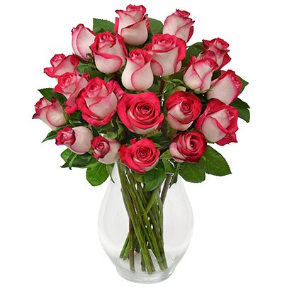 Charme das Rosas Pink 20 Rosas