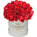 Majestosas Rosas Vermelhas Premium White