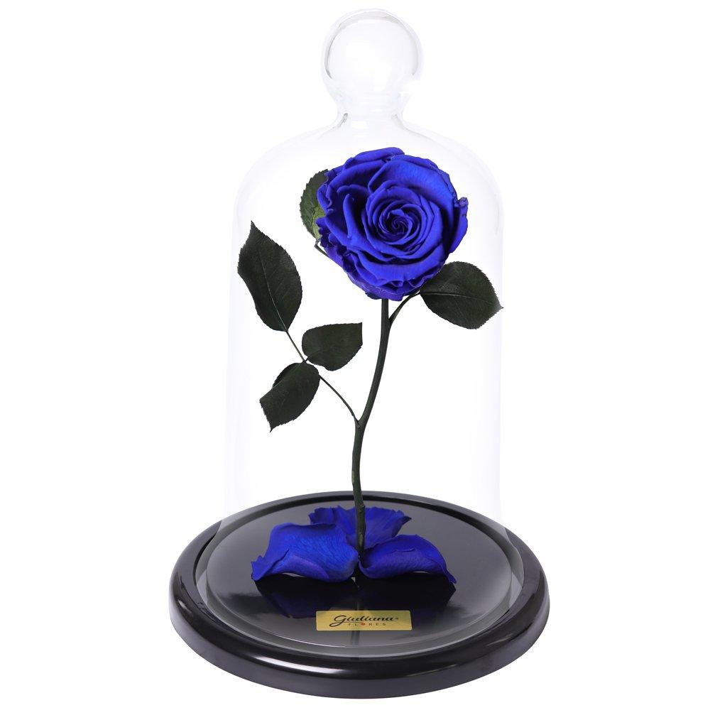 A Rosa Encantada Azul