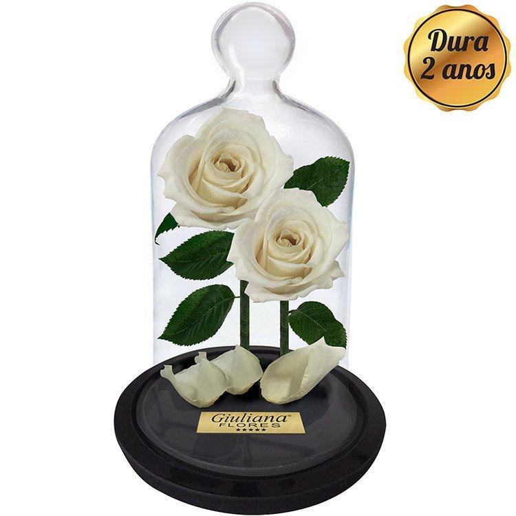 Jardim das Rosas Encantadas Brancas
