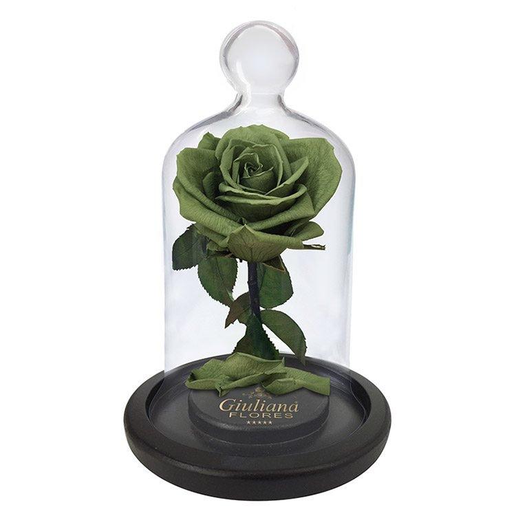 A Rosa Encantada Verde