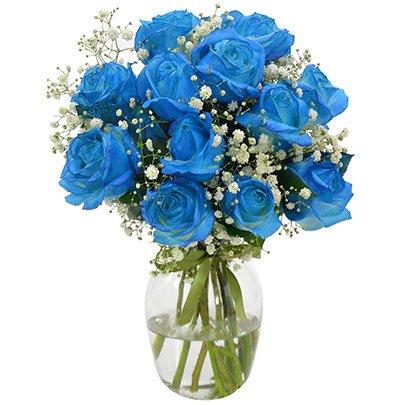 Elegância das Rosas Azuis