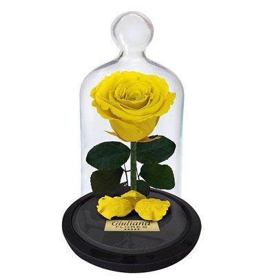 A Rosa Encantada Amarela