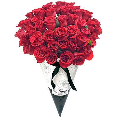 Fabuloso Cone de Rosas Vermelhas