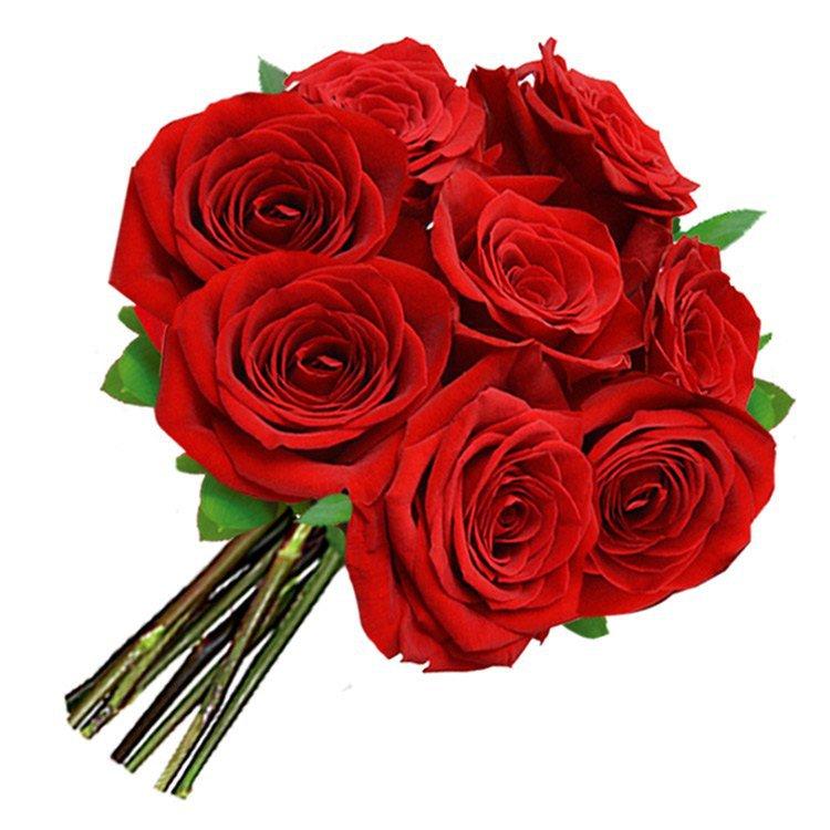 Buquê de 8 Rosas Vermelhas