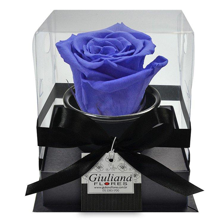 'Rosê Preservada Blue'