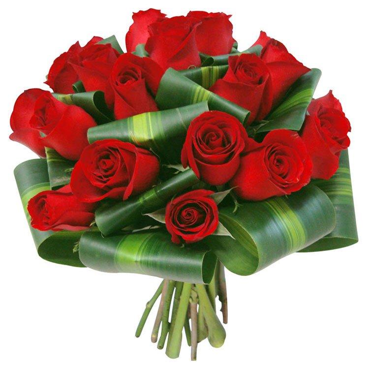 Buquê Serena de 12 Rosas Red